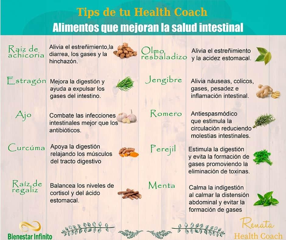 Alimentos que mejoran la salud intestinal