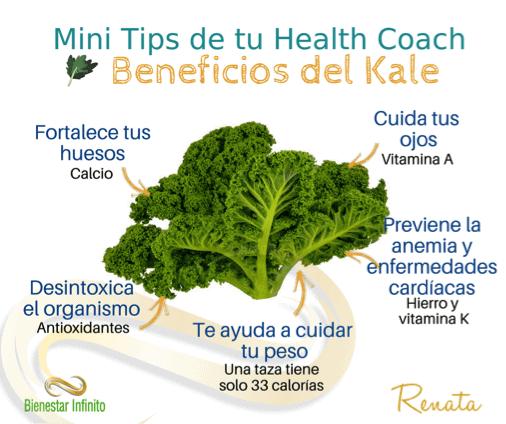 Beneficios del kale