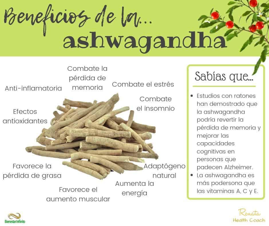 beneficios-ashwagandha