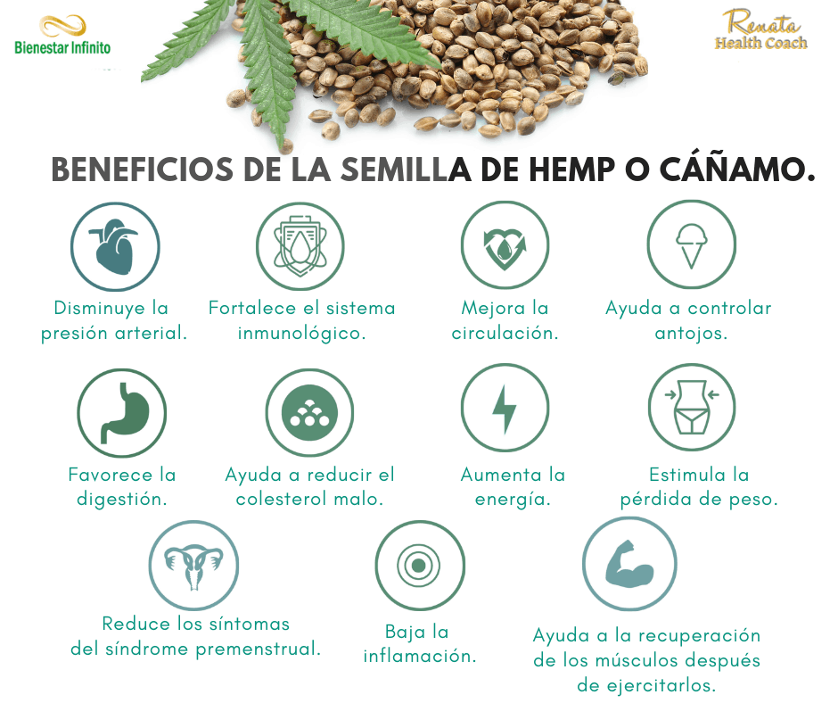 hemp_beneficios_ de la_ semilla_de